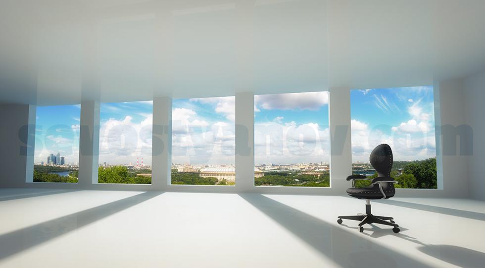 Empty Office Visualization