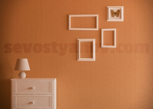 Frames in Interior Design