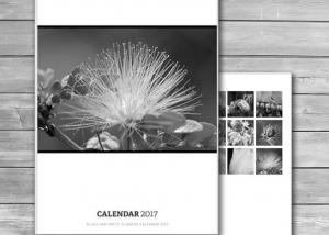 Photo Wall Calendar 2017