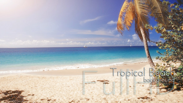 Caribbean Nature Footages