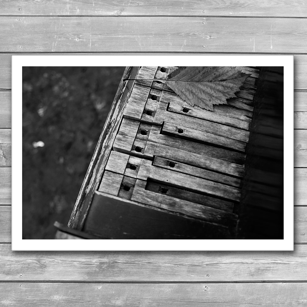 Piano Black and White Photo Print
